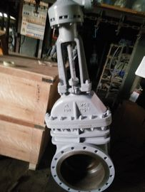 China API 600 Class 150 Rising Stem Worm Gear Operated Flanged Steel Gate Valve For Oil supplier