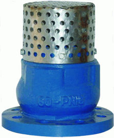 China Low Pressure 4 Flanged Foot Valve , PN16 Oil Cast Iron Foot Valve distributor